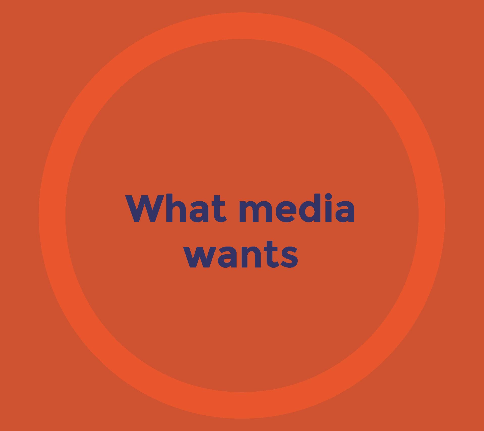 agenda-mediasavvy-01